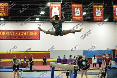 UC Gymnastics 2016