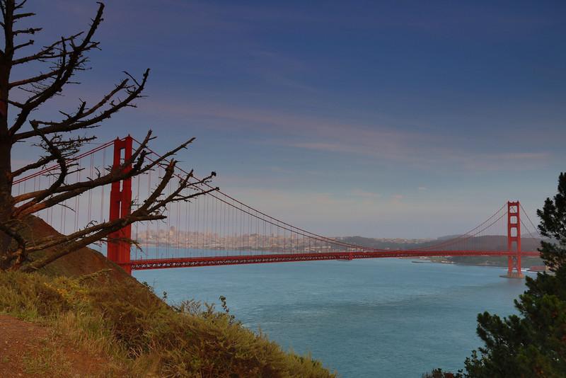 20150505-San Francisco-5D-128A1420.jpg