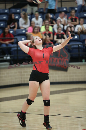 Mansfield Legacy Volleyball - 2015