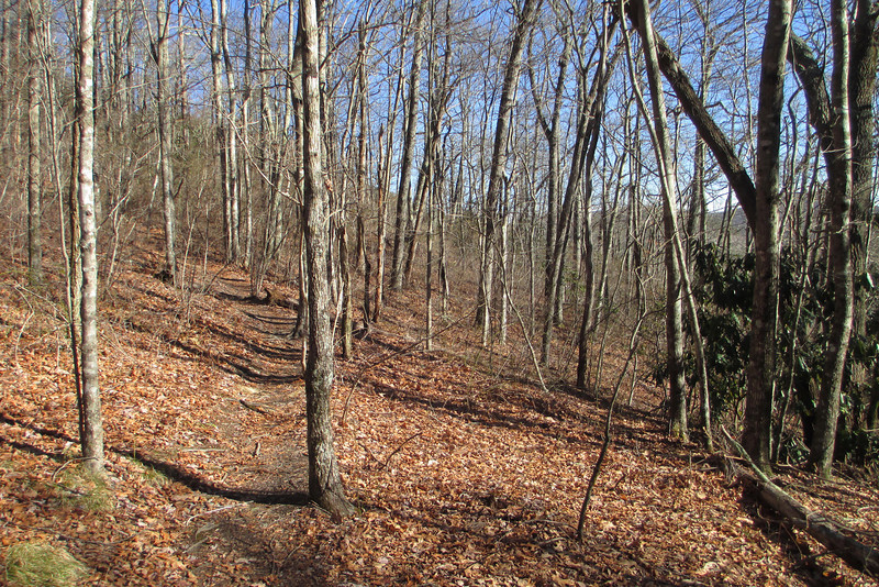 Blackrock Spur Trail