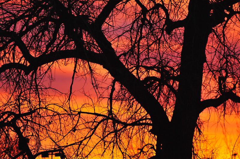 South Platte River Sunrise