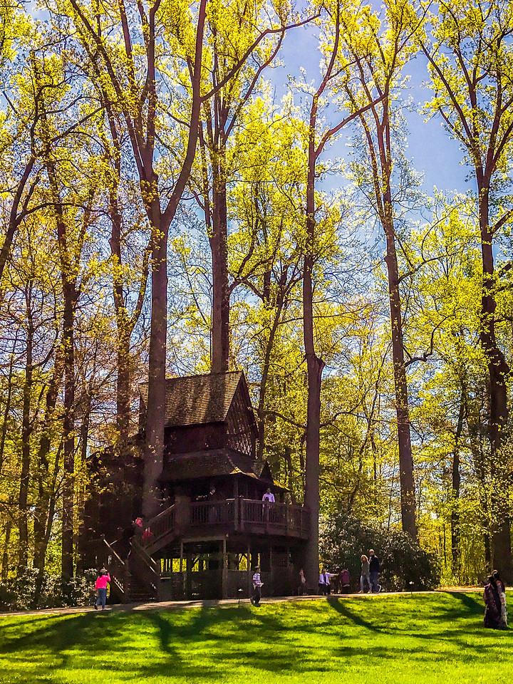 宾州长木公园,春意盎然
