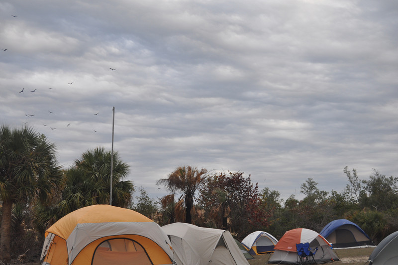 2011 01 23 Scout Camptrip Ft. Pierce Inlet 129.JPG