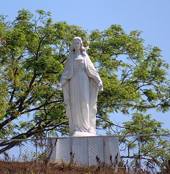 La Virgen de las Rosas (La Virgen de Lost Angeles)