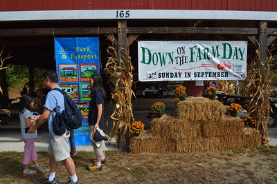 Great Brook Farm State Park - Down on the Farm Day 2015