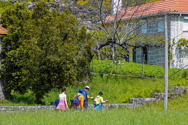 Vouzela-PR2 - Um Olhar sobre o Mundo Rural - 17-05-2008 - 7408.jpg
