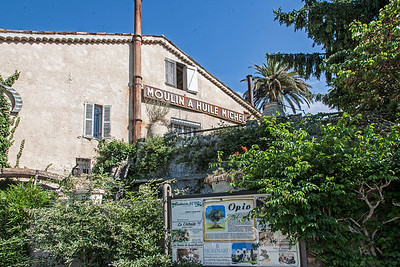 Moulin d Opio Olive Oil