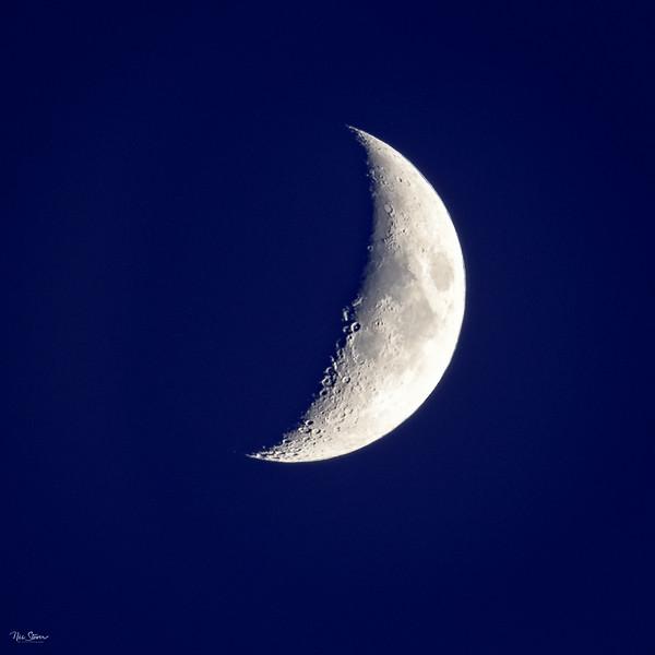 Da Moon-3.jpg