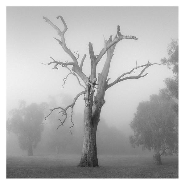 Australia047.jpg