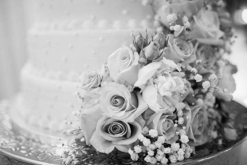 0812_Josh+Lindsey_WeddingBW.jpg