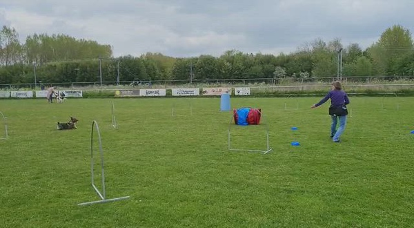 Mei 2021 - Hooperstraining Ronja en Iggy