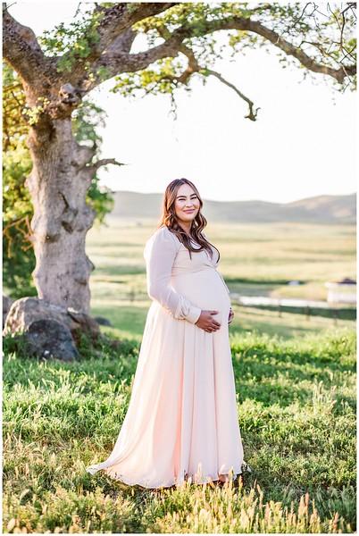 maternity-session-mini-mountains_0061.jpg