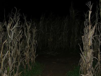 10-24 - Corn Maze - Cleveland, GA