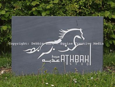Athbah Stud & Racing