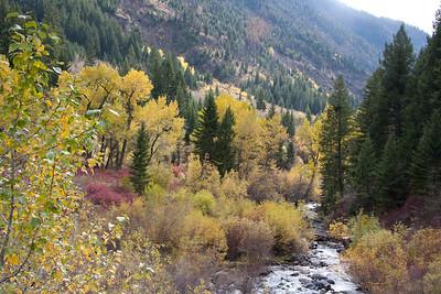 101610 Trail Creek Exploration