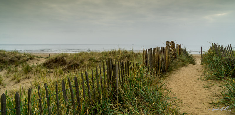 Sand Dunes at St Andrews