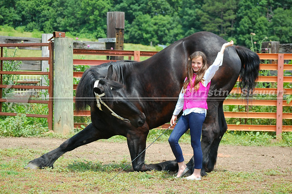 Equine Photo Sessions & Farm Shoots
