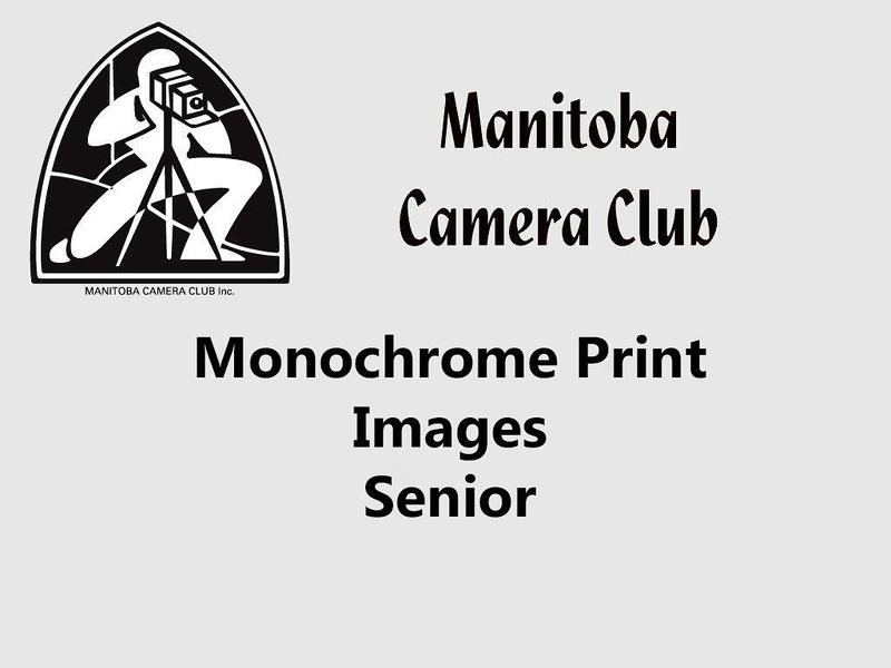 300a-Monochrome Senior.jpg