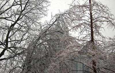 New Albany ICE Storm 2009