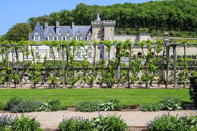 May 6 - Morning Walk and Chateau-de-Villandry
