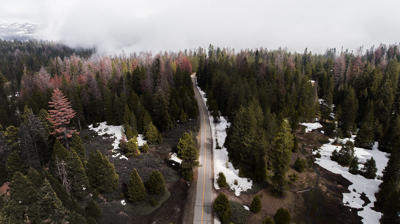 Dinkey Creek Road