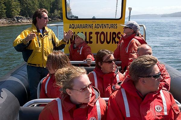 10- Whale Watching Tour