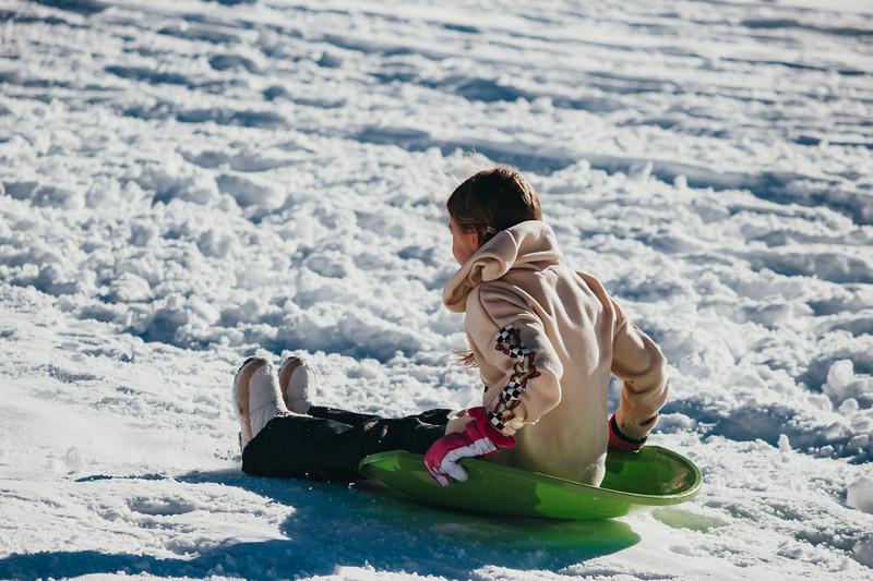 snowMLK-2820.jpg