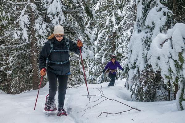 2020-01-04 Cutblock Peak Trail