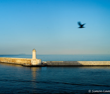 Livorno Harbour