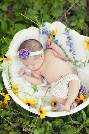Charlotte: Newborn Session