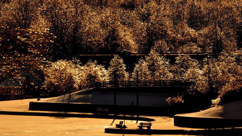 WW 01-30-2009 43.jpg