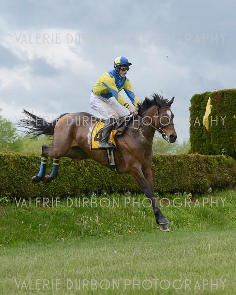 Valerie Durbon Photography Gold Cup 9.jpg