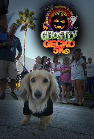 Ghostly Gecko 2012