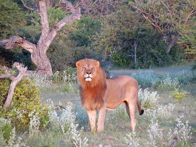 06 - Namibia (2)