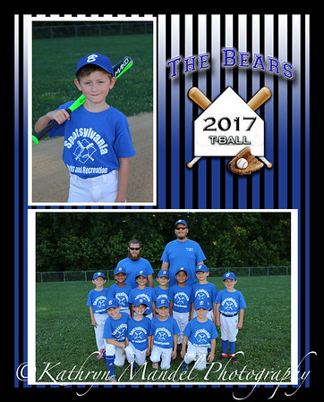Tball Memory 8x10 (Free to Team)