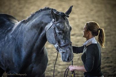 CSHA Stallion Inspection 2019