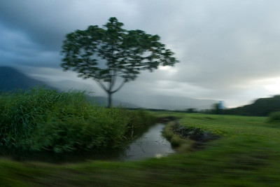 Kaua'i Island Blurs and Landscapes