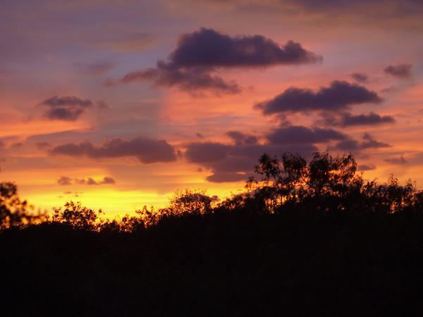 Shrinkwood and Sunsets