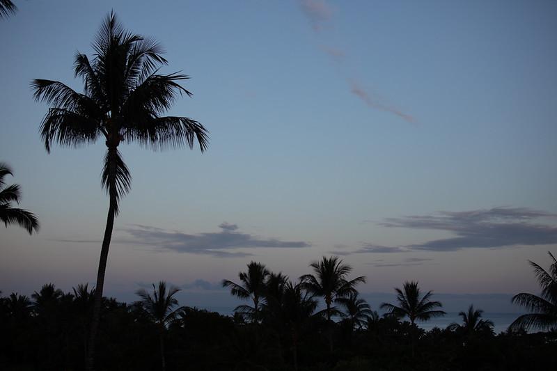 Travel_Hawaii_032020_0057.jpg