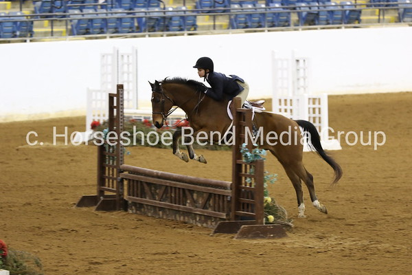 2019 Polar Bear Horse Show -- afternoon through end of show