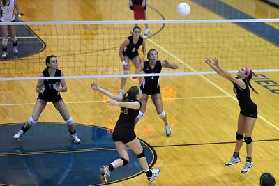 2010 AHS varsity volleyball