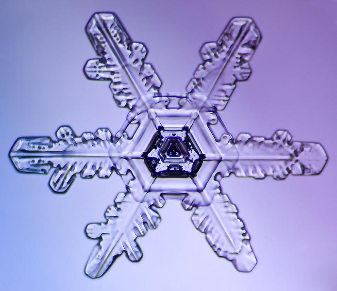 snowflake-5546-Edit.jpg