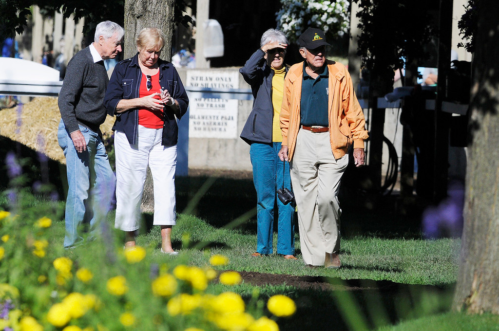 . Cot and Anne Campbell were spotted at Todd Pletchers barn after Exercise Rider Jake Nelson breezed Palace Malice on Sunday morning. Set to run in Travers Stake at Saratoga Race Course.Photo Erica Miller/The Saratogian 8/11/13 spt_PalaceMalice3