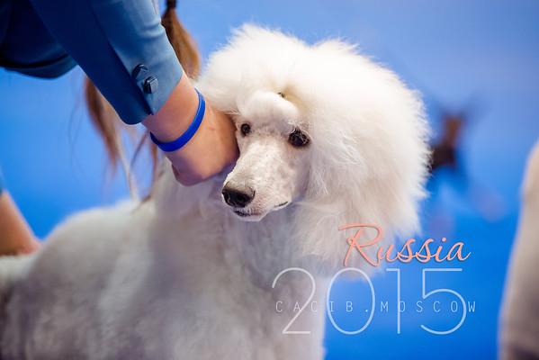 Russia_2015