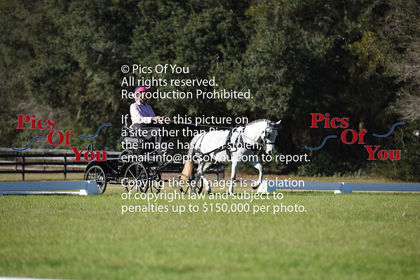 Grand Oaks Classic and Derby Feb 2016
