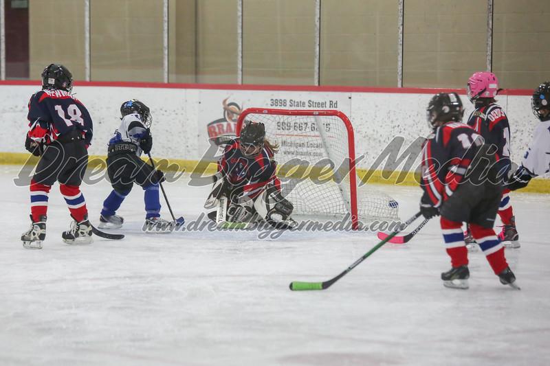Blizzard Hockey 111719 7261.jpg