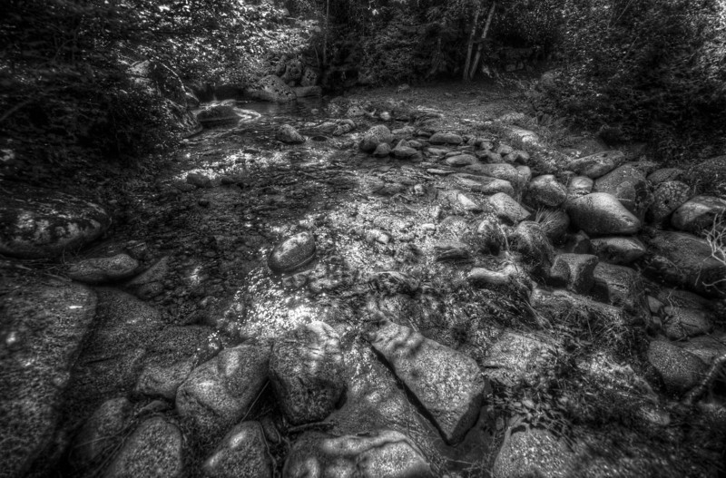 Stone piles spotted in forest of Andorra in B&W