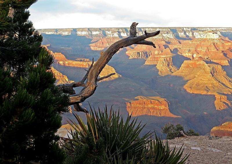 IMG_0562_0560 Mima's Grand Canyon.jpg