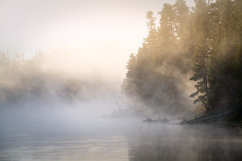 Golden Mist || Yellowstone River