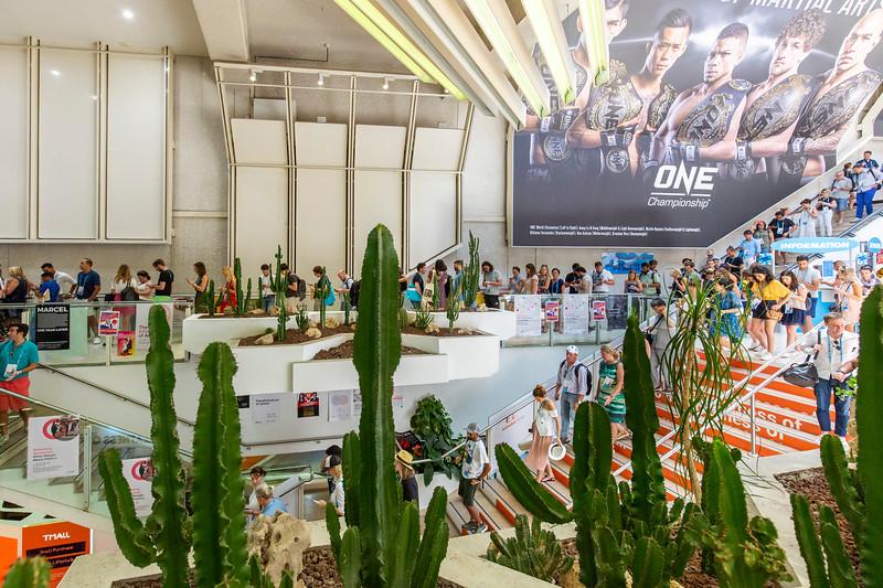 Cannes150.jpg